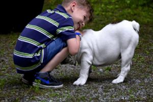 Cani per autismo